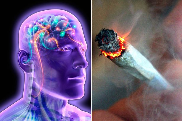 Възможна генетична връзка между пушенето на канабис и шизофренията