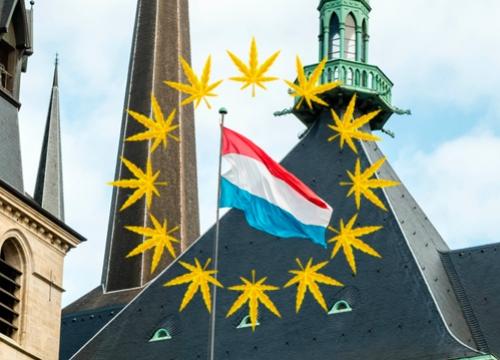 Люксембург - първата страна в ЕС, която ще легализира канабиса