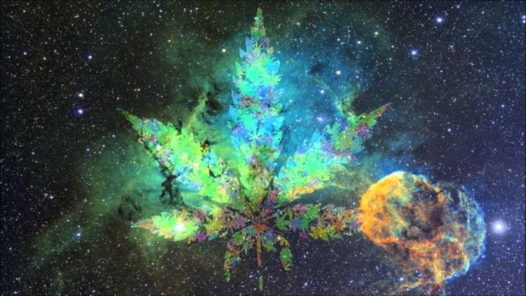 Канабисът: мистичната билка
