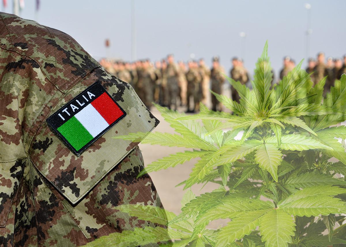 Италианската армия има за цел да отглежда канабис от най-високо качество