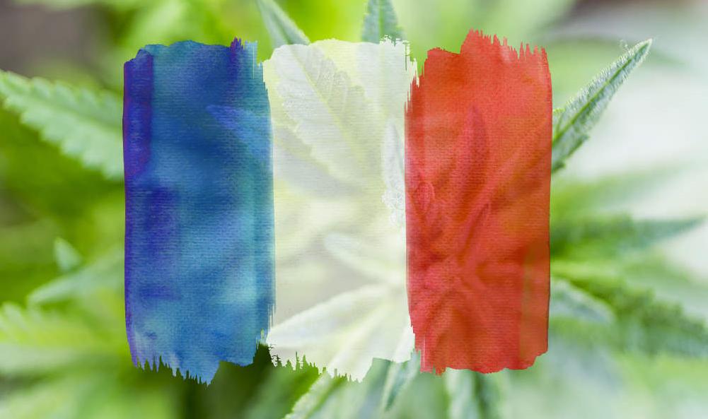 """В правилната посока: Франция обмисля да """"експериментира"""" с медицински канабис"""