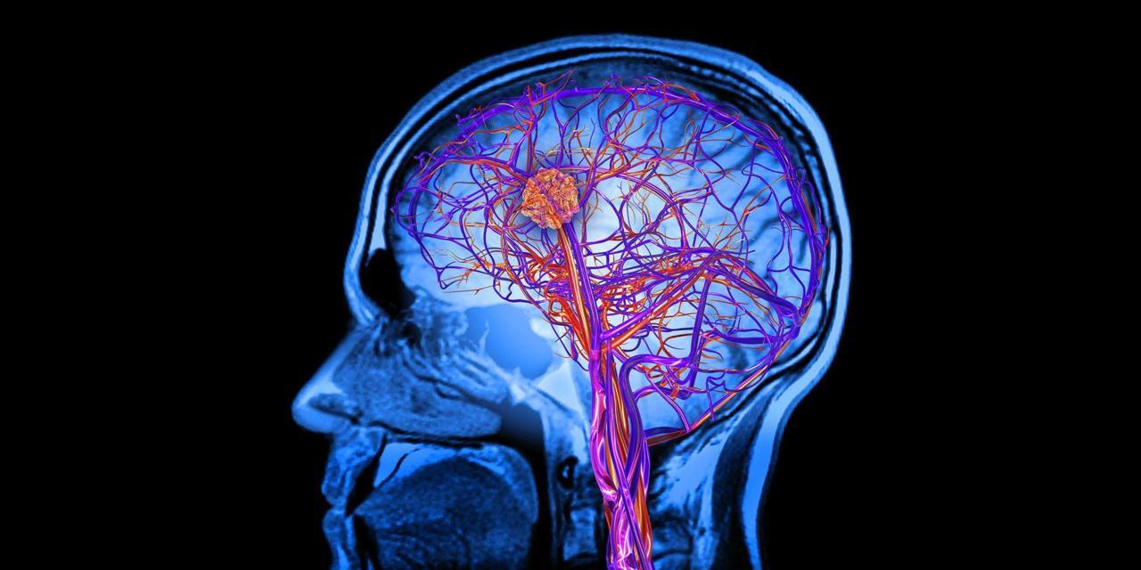 Употребата на коноп увеличава притока на кръв и кислород в мозъка
