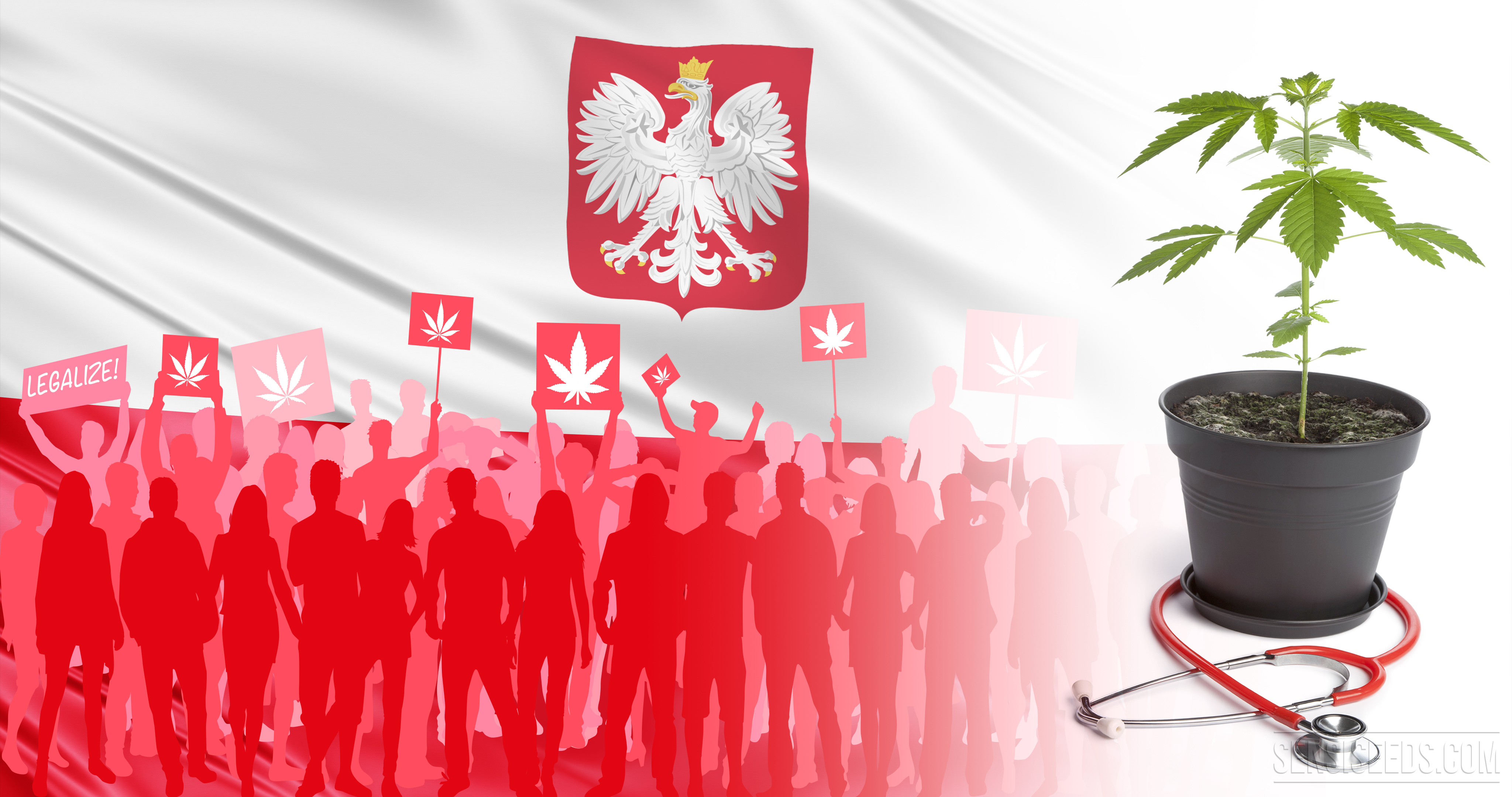Полша легализира употребата на канабис за медицински цели