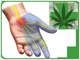 Канабиноиди и хронична болка