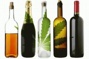 Какво става, когато смесим алкохол и канабис?