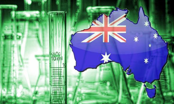 40% ТХК? Австралийците отглеждат най-силният канабис в света