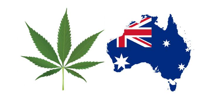 Австралия ще регулира употребата канабис за медицински цели