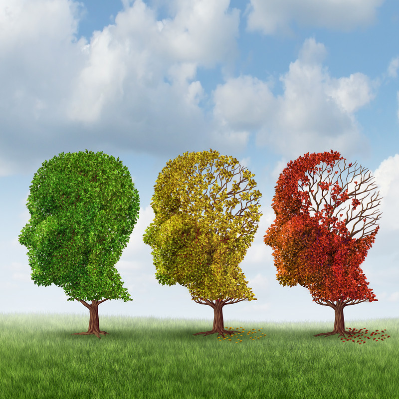 Блокирането на ендоканабиноидите  като предпоставка за Алцхаймер