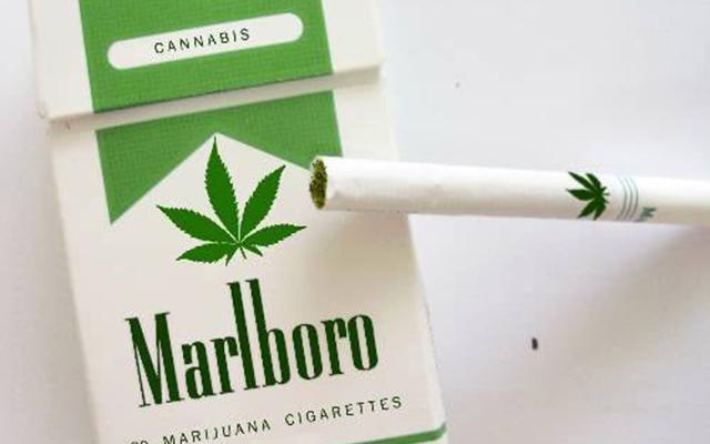 Бъдещето на тютюневата индустрия е под риск - тревата печели!