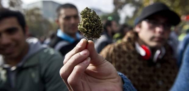 Чили декриминализира: законодатели на път да разрешат на хората да отглеждат свои собствени растения