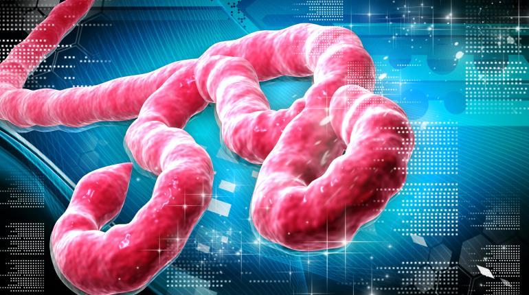 Ebola.com купен от канабис активисти