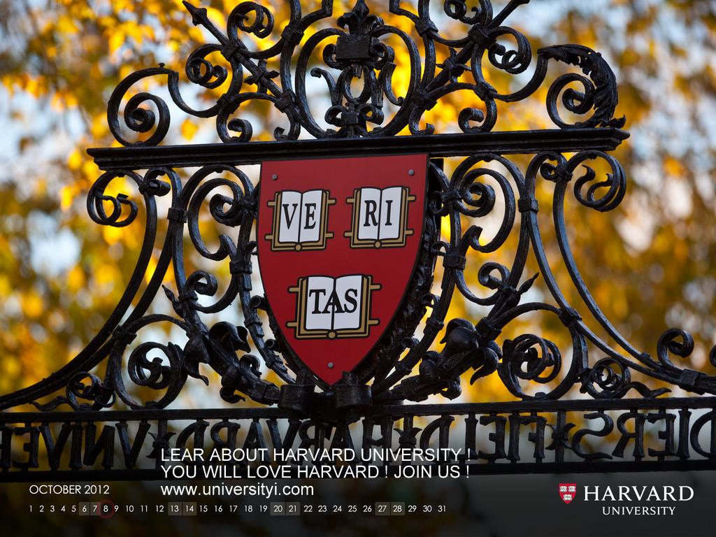 Харвардският Университет: Марихуаната лекува рак