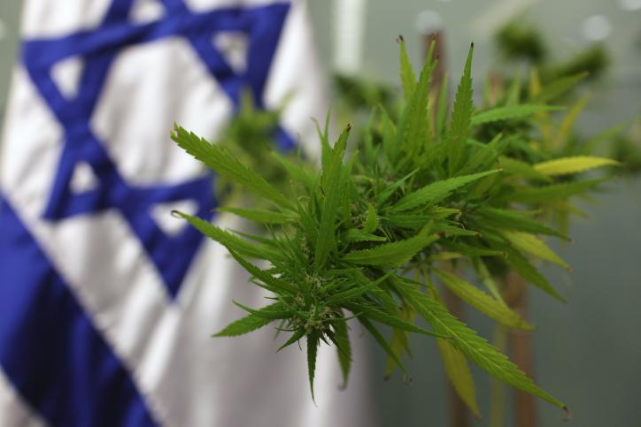 Израел предлагат пет нови сорта канабис подходящи за облекчаване на болка