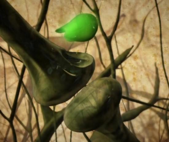 Какво е канабис и какво са канабиноиди