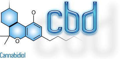 Канабидиолът е ефективен в борбата с възпаленията  и агресивните форми на рак