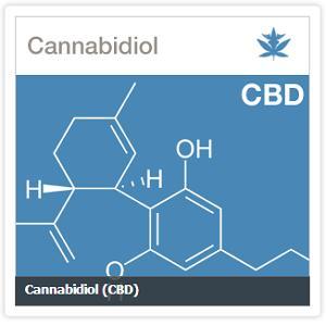 Канабидиолът е асоцииран с облекчаване на симптомите на болестта на Паркинсон