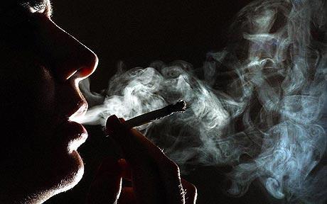 Канабисът не предицира злоупотребата с наркотици и алкохол