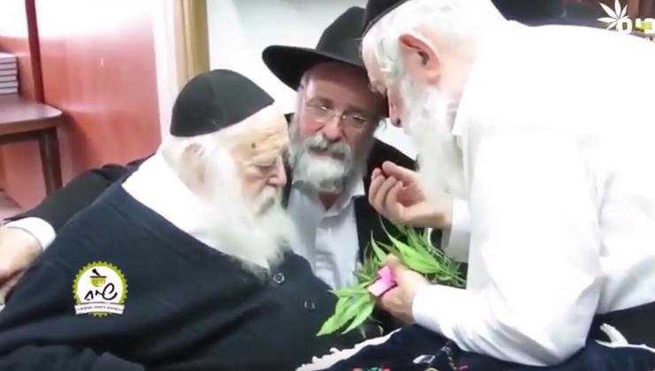 Канабисът е кашерен за Пасха, споделя виден равин