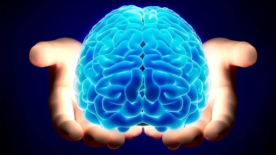 Канабисът забавя стареенето на мозъка