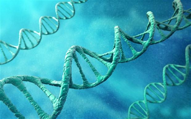 Конопът може да поправя ДНК