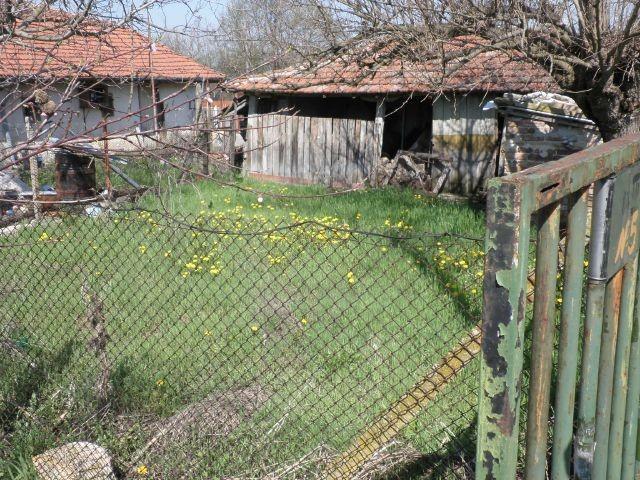 Легалното положение на конопа в България