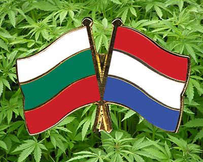 Посолството ни в Холандия сътрудничи за развитието на конопената индустрия в България