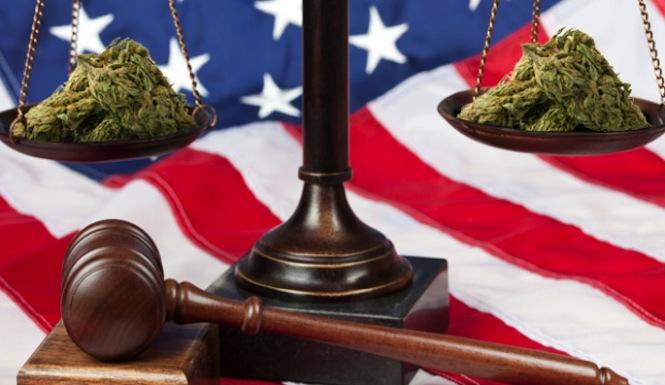 Предстой легализация на медицинския коноп във Флорида
