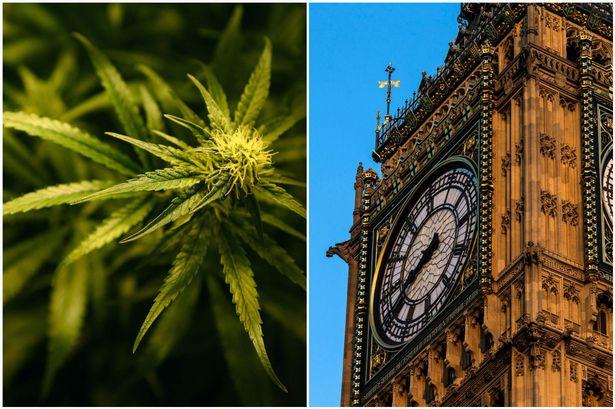 Предстои парламентарен дебат относно легализацията на канабиса в Англия