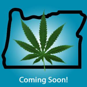 Щатът Орегон и столицата Вашингтон гласуваха За легализацията на конопа