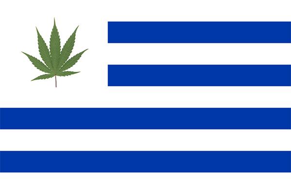 Уругвай - 1 долар за грам канабис