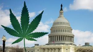 Вашингтон декриминализира притежанието на канабис в малки количества