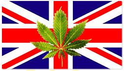Внесено е предложение за легализация на канабиса във Великобритания