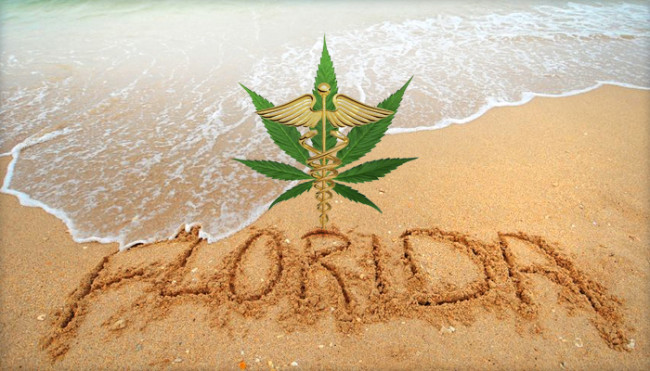 Вотът на избирателите във Флорида не достигна необходимия процент за легализация на медицинския коноп