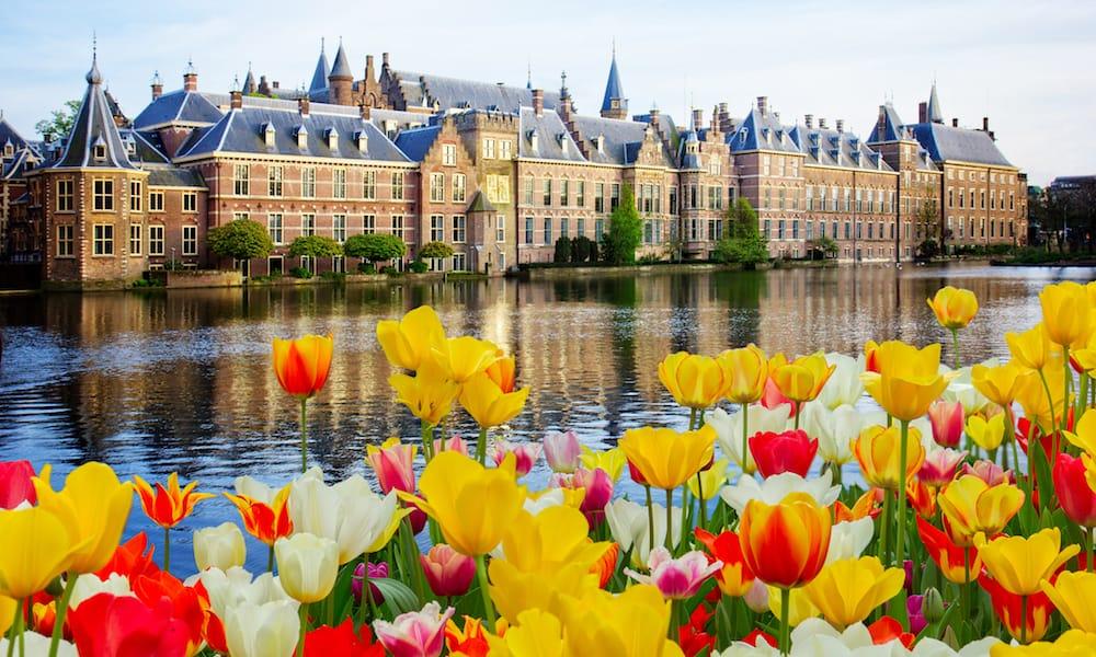 Холандски общини ще отглеждат канабис за експериментали цени