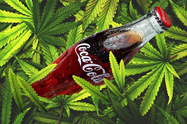 От Кока-Кола проучват използването на конопена тинктура в напитките си