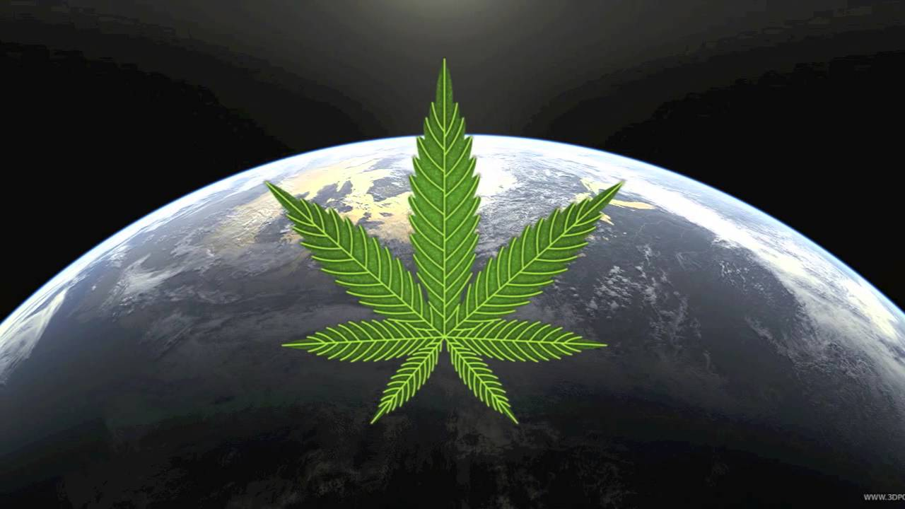 """Войната с конопа - растение, което може да """"спаси"""" света"""