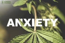 Канабидиолът помага за възстановяването от хроничен стрес и намаляване на тревожността