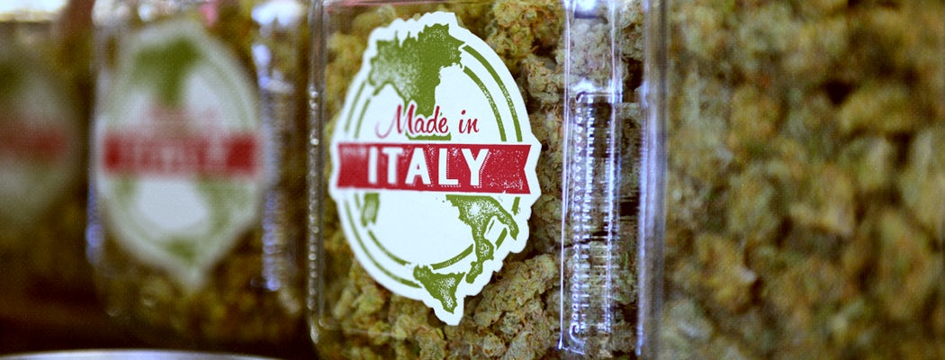 Италия узакони отглеждането на канабис в домашни условия